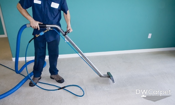 Top Reasons to Hire a Carpet Cleaning Professional