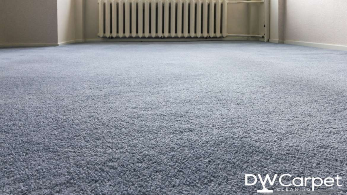 Common Carpet Problems and their Treatments