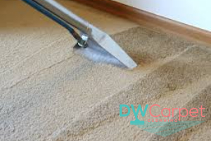 Carpet-Shampooer-Dw-Carpet-Cleaning-Singapore