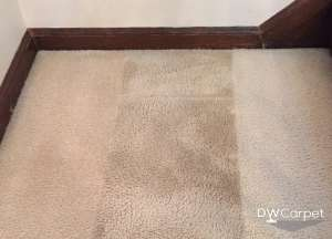 Recommeded-Carpet-Cleaning-in-Singapore-Dw-Carpet-Cleaning-Singapore_wm