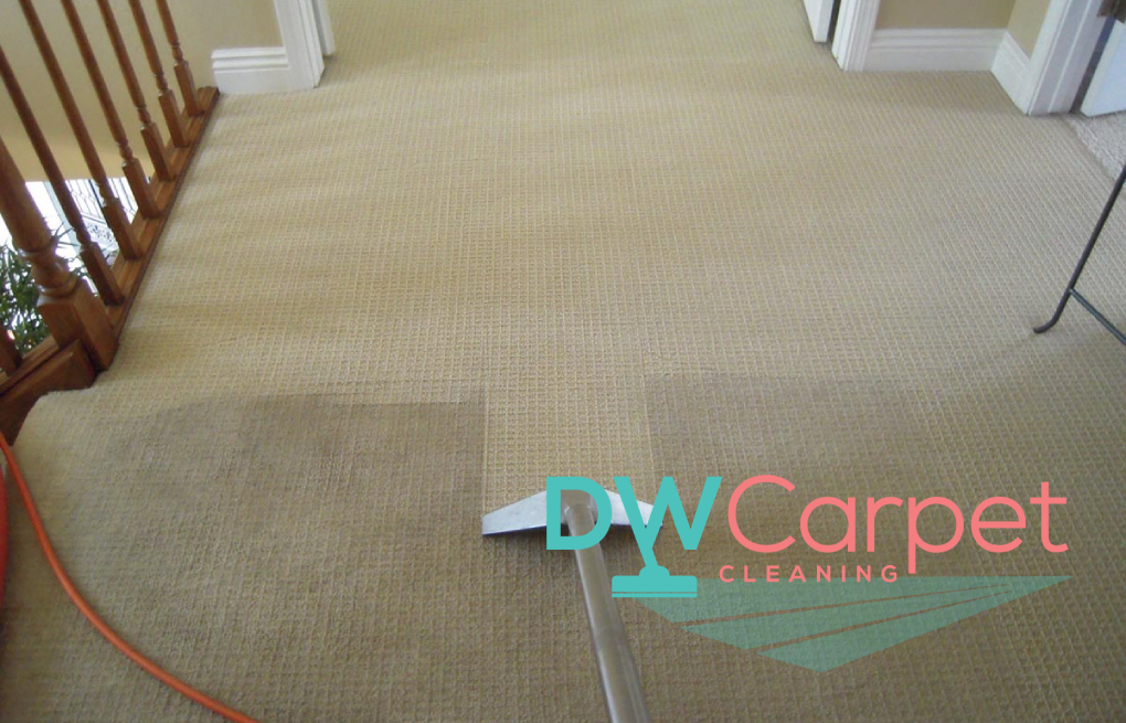 How Much Does It Cost For Carpet Cleaning In Singapore?
