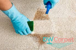 carpet-stain-cleansing-dw-Carpet-cleaning-Singapore