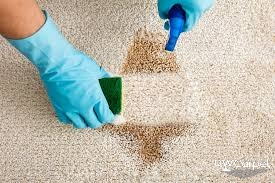 carpet-stain-cleansing-dw-Carpet-cleaning-Singapore_wm