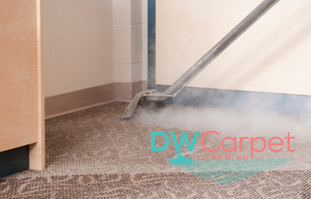 The Pros and Cons of Different Carpet Cleaning Methods and Techniques