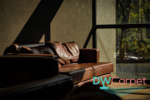 keep-sofa-away-from-sun-sofa-cleaning-carpet-cleaning-singapore