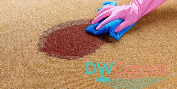 Useful Tips on Rug Cleaning