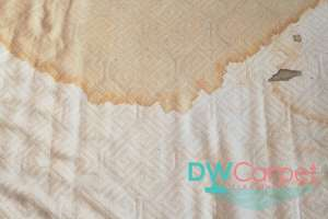 orange-stain-on-mattress-cleaning-dw-carpet-cleaning-singapore