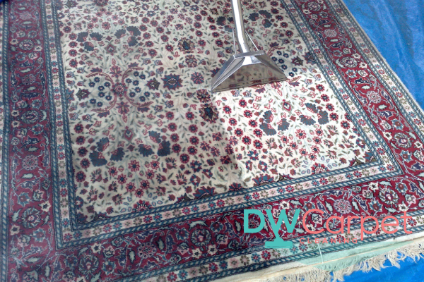 rug-cleaning-procedure