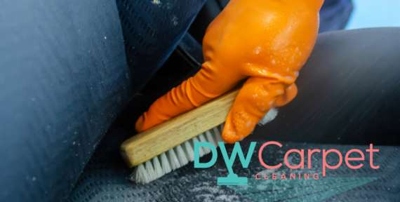 Reasons to Engage Professional Upholstery Cleaning Services in Singapore