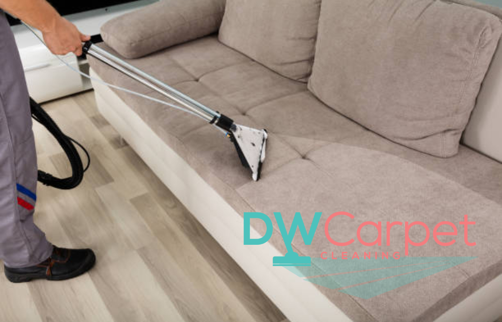 How Often Should You Hire Professional Sofa Cleaning Services