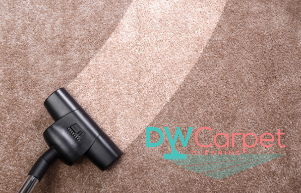 How Often Should Commercial Office Carpet Cleaning Be Done