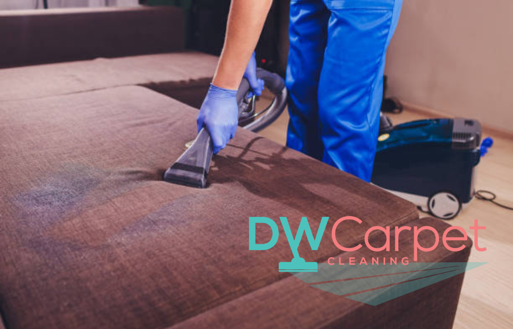 Things to Take Note of When Hiring a Professional Sofa Cleaning Company